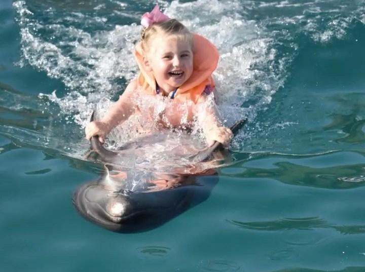 Отважная девочка. Трехлетняя дочь Пелагеи показала смелый трюк с дельфином (видео)
