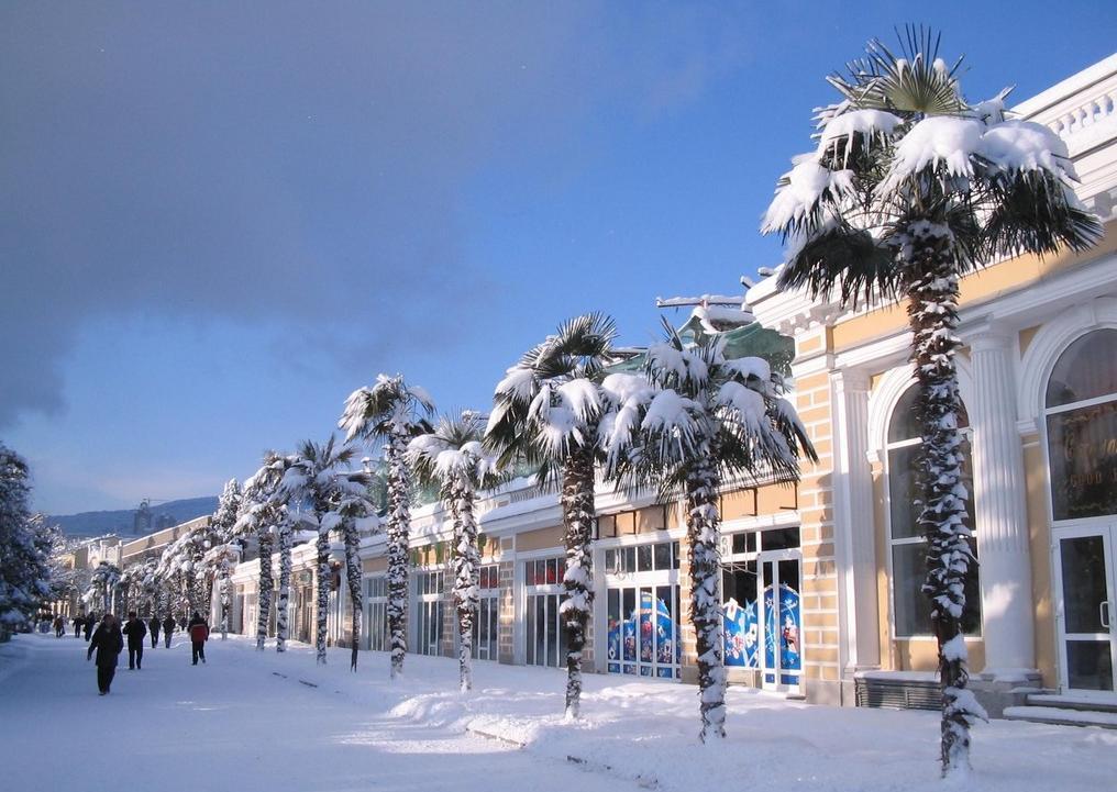 Дома не сидится: россияне уже бронируют места в отелях и покупают туры на Новый год. Какие направления пользуются спросом