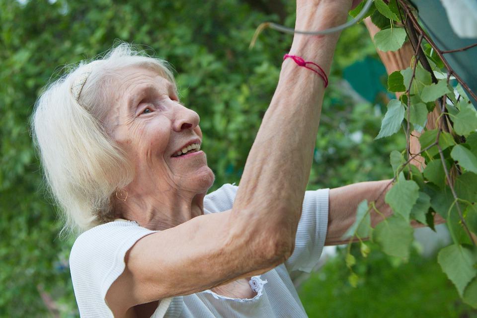 Железо в крови и старение: исследователи говорят о важности железа в крови