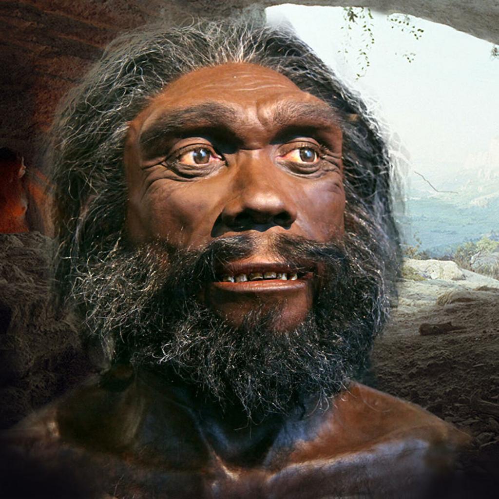ДНК древнего денисовского человека обнаружили в тибетской пещере: открытие показывает, что этот вид мог существовать одновременно с человеком современным