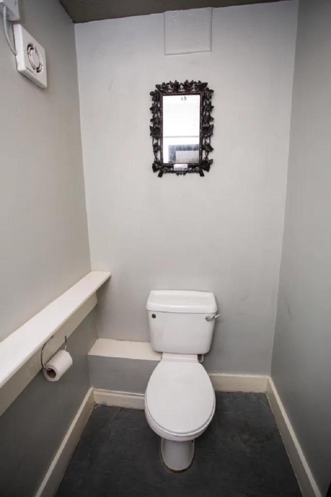 Зеркало королевы Франции провисело 40 лет в туалете обычной семьи: они и не подозревали, что это раритет