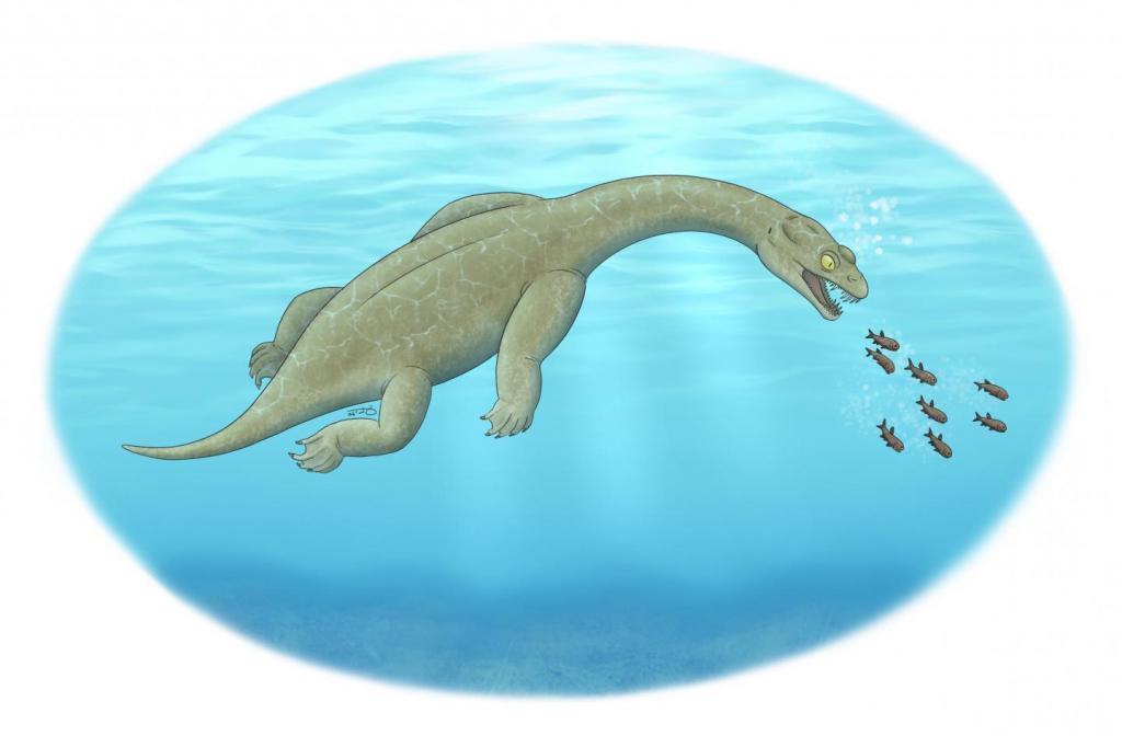 Новая доисторическая морская рептилия напоминала миниатюрную смесь Лох-Несского монстра, аллигатора и зубастого тираннозавра