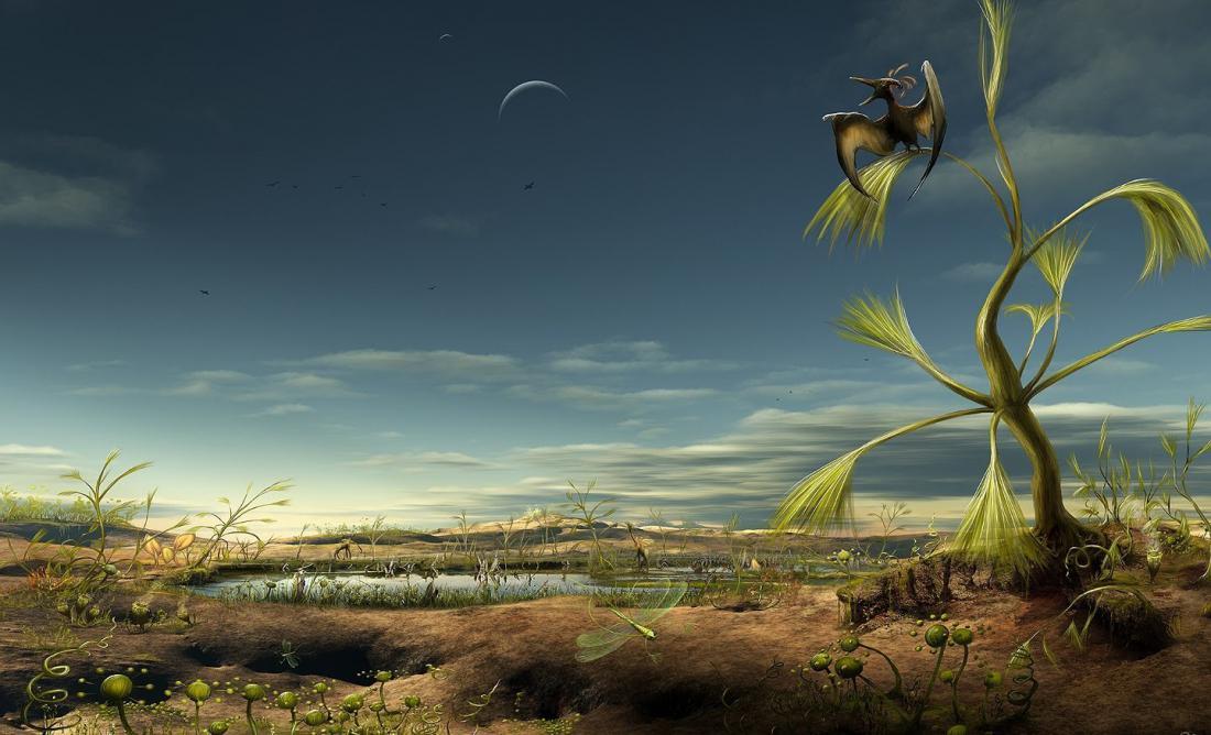 Что теория Дарвина может рассказать нам о жизни на других планетах? (10 фото)