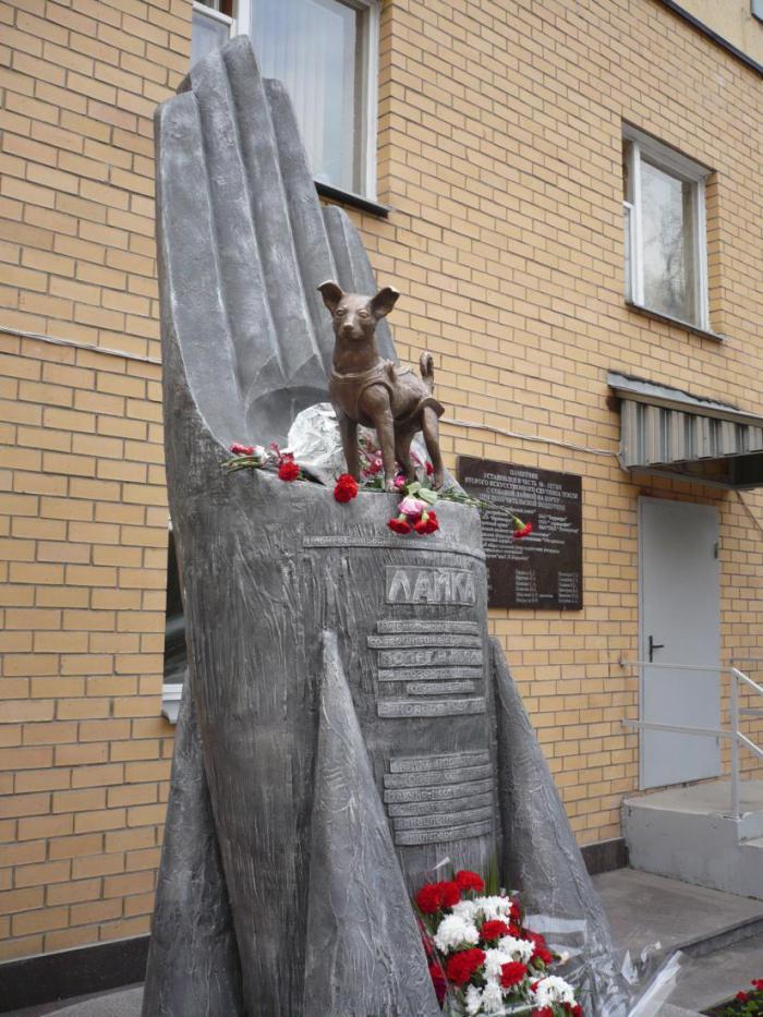 До Гагарина. Памятник Лайке