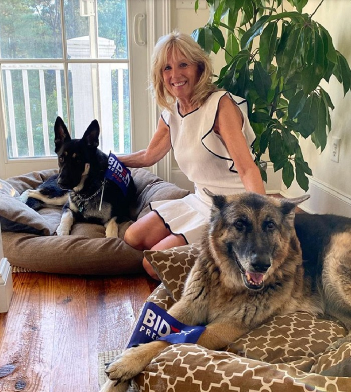 Майор – овчарка, которую оставили в приюте. Теперь пес будет жить в Белом доме
