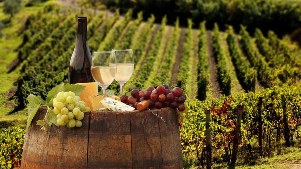 Анализ для вина: ученые разработали систему, позволяющую избавляться от подделок в сфере виноделия