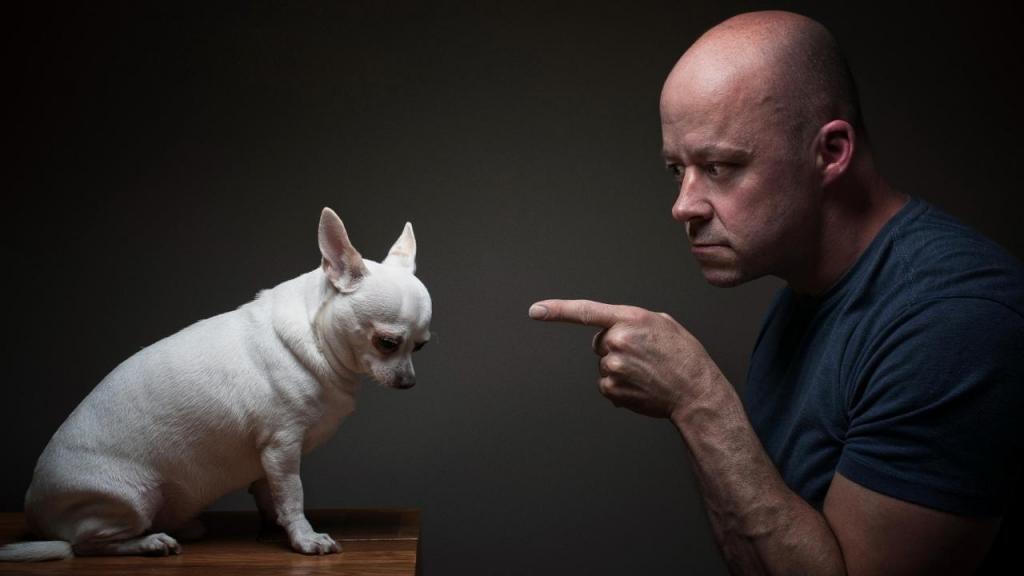 Если ты меня любишь, не разговаривай со мной по душам! Что собакам приходится терпеть в своих хозяевах