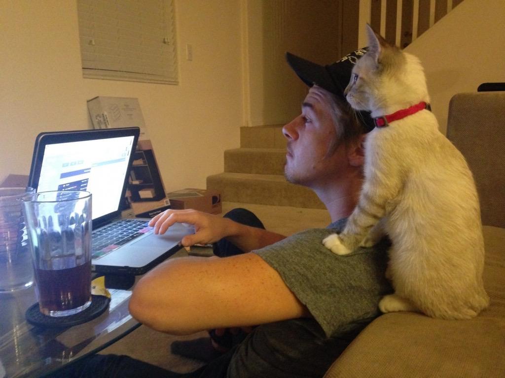 Кошка или собака в кадре развеселит и оживит коллег – посмейтесь вместе. 5 неловких ситуаций на виртуальной встрече, на которых не надо зацикливаться и переживать
