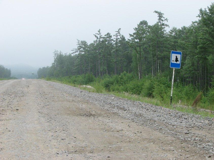 """""""Пляшущая елка"""": почему на дорожном знаке «Место отдыха» елка изображена под наклоном"""