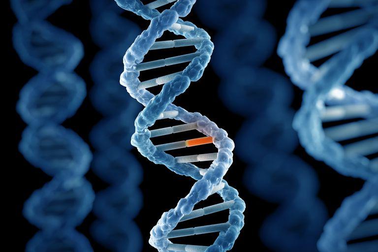 Генетическая мутация, которая не дает спать по ночам: новые исследования