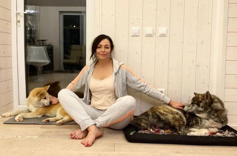 У знаменитостей тоже есть свои любимцы: какие питомцы живут дома у российских звезд