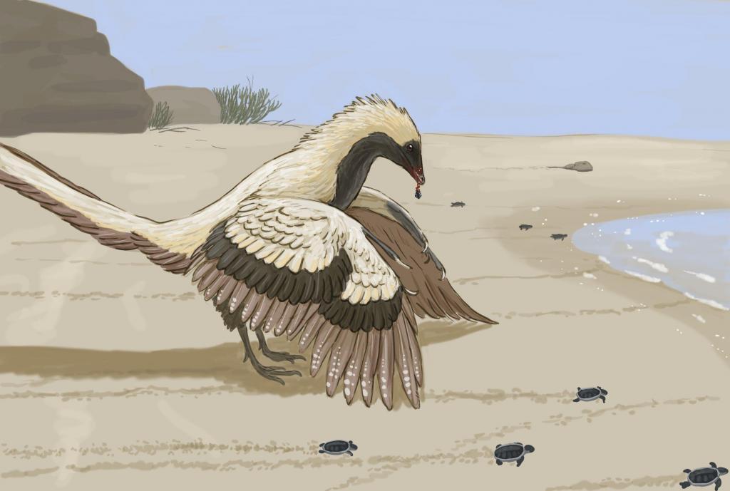 Ученые намерены возродить вымершие виды птиц с помощью кур-несушек: на сегодняшний день собрано около 17 миллиардов пар оснований ДНК