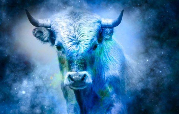 Чего ждать от 2021 года: общая характеристика года Белого Металлического Быка