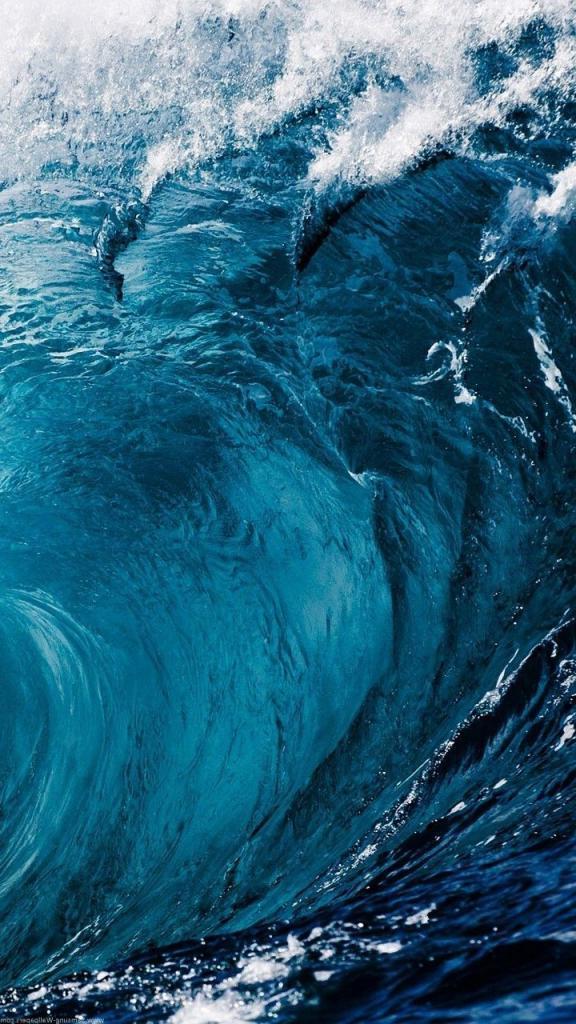 """Участники российской научной конференции """"Физика водных растворов"""" пришли к выводу, что воды не существует"""
