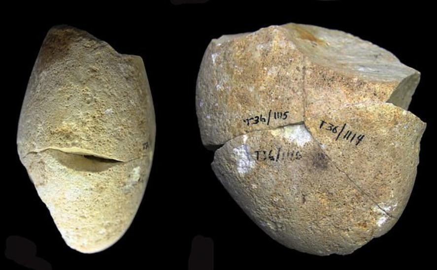 Древнейший инструмент, используемый первобытными людьми, найден в израильской пещере. Ученые из Хайфского университета считают, что ему 350 000 лет