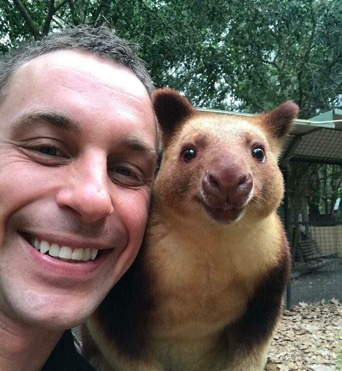 """Обнимашки с тигром и селфи с вомбатом: австралиец, который управляет целым парком дикой природы, поделился """"закулисьем"""" своей работы"""