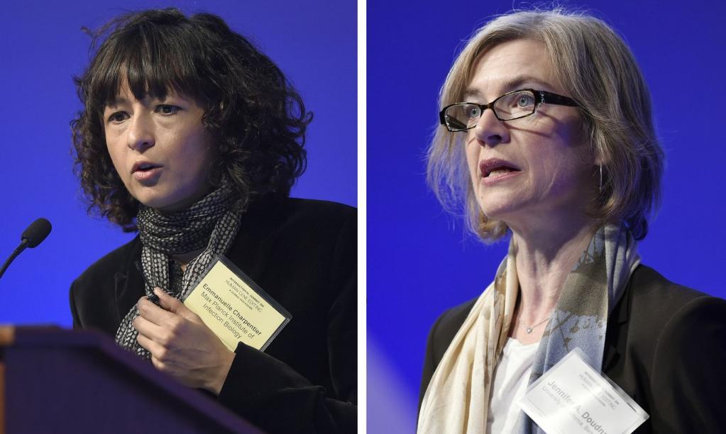 Женщин-лауреатов Нобелевской премии в 2020 году стало больше в два раза по сравнению с 2019-м: им покорилась литература, химия и физика