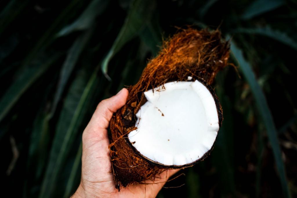 Скраб для тела собственного приготовления из сахара и кокосового масла так же эффективен, как покупной. Советы по красоте с использованием повседневных продуктов