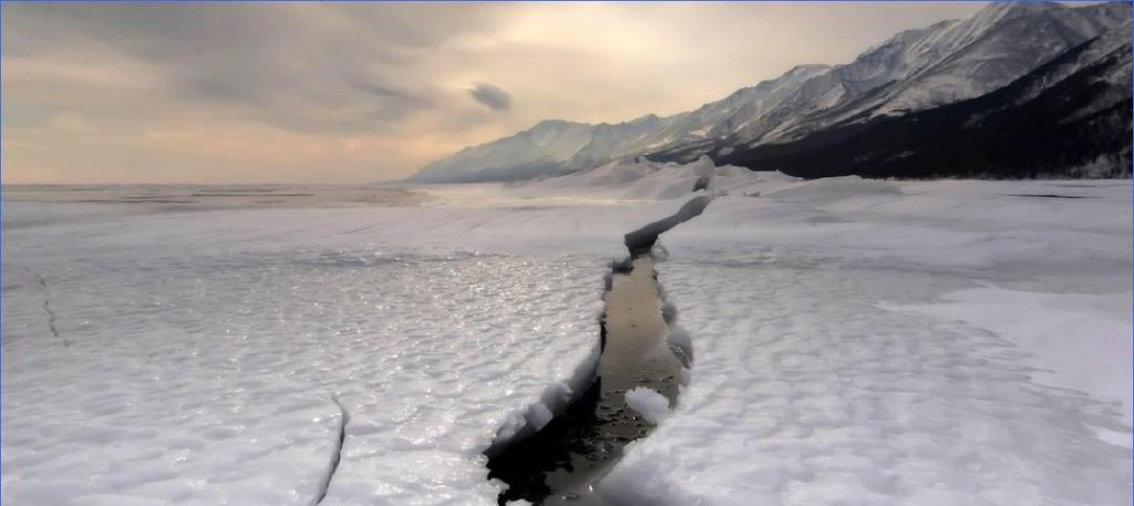 Москвичка проплыла 85 метров подо льдом без гидрокостюма и установила мировой рекорд