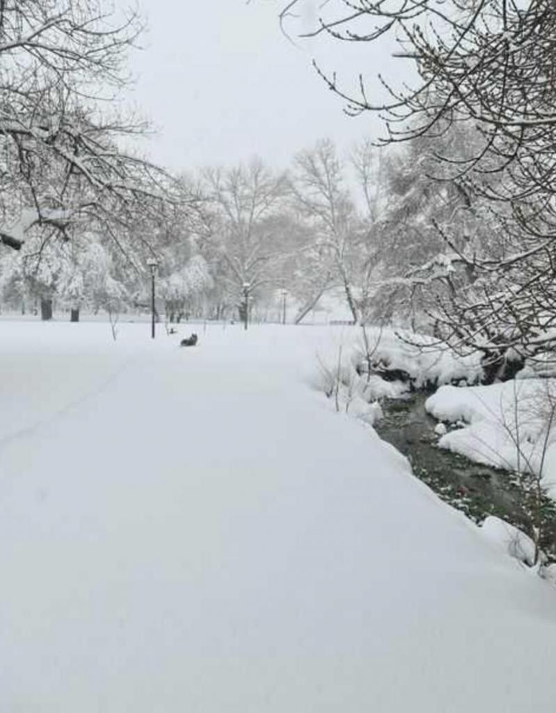 Снегопады уже третий день: в Марокко пришла снежная зима (фото)