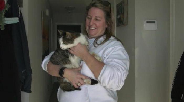 Чудесное возвращение: кошка Каддли воссоединилась с семьей спустя 10 лет