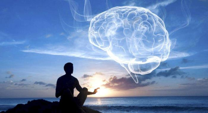 Сознание