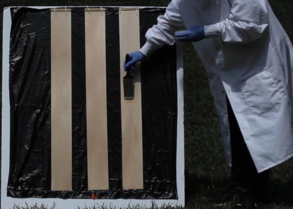 Ученые из США создали прозрачную древесину для производства окон и строительства зданий