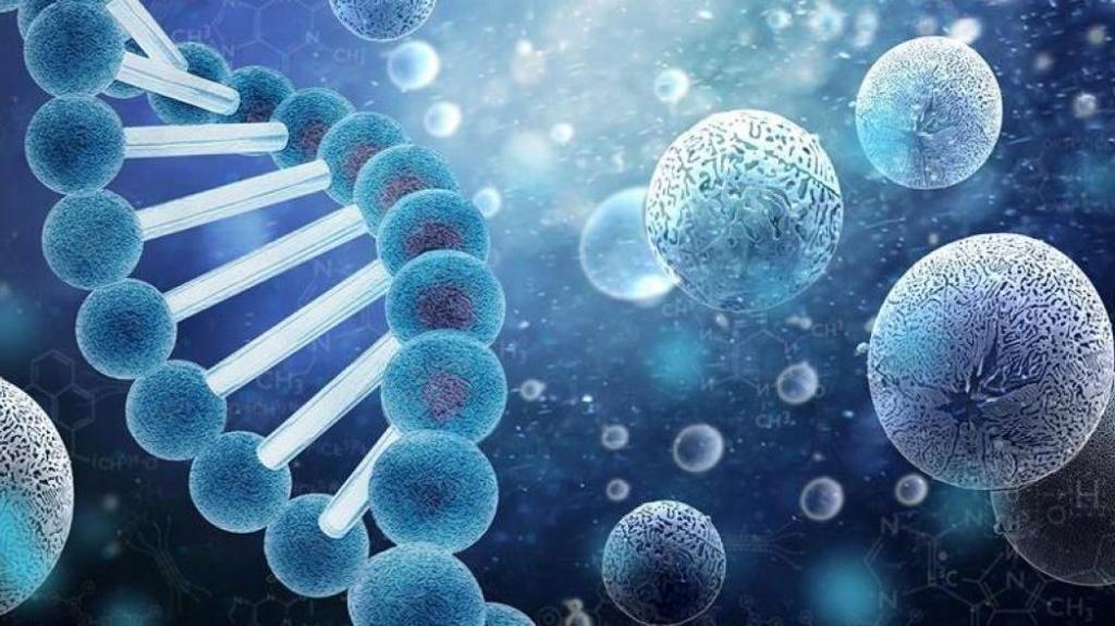 Дешевая, безопасная и эффективная: ученые работают над созданием прототипа вакцины против COVID-19 на основе наночастиц