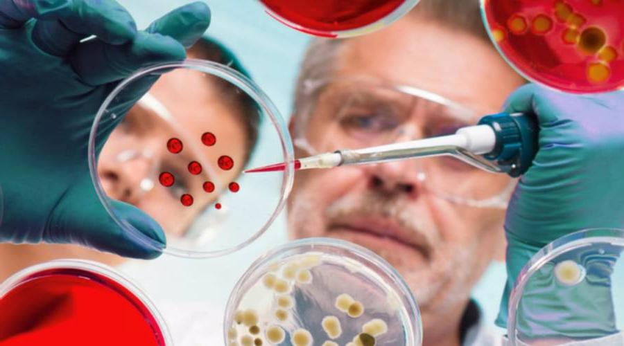 AstraZeneca рассчитывает за 6-9 месяцев создать следующее поколение вакцин, эффективных против новых штаммов коронавируса