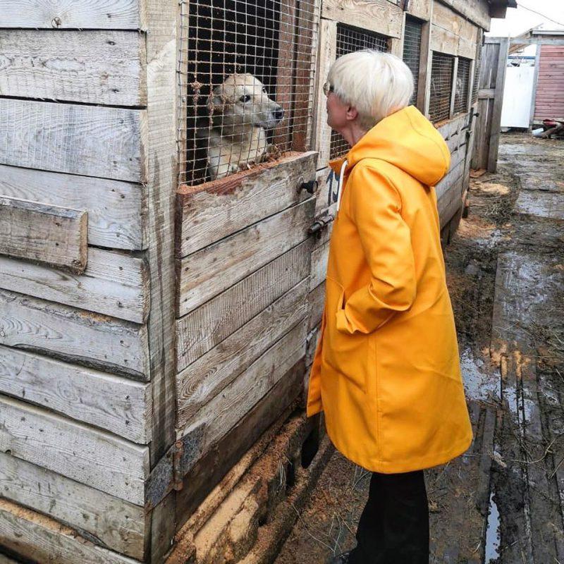 """Флешмоб """"#ПесНаСчастье"""" и не только: как дочери Эдиты Пьехи удается пристраивать бездомных животных"""