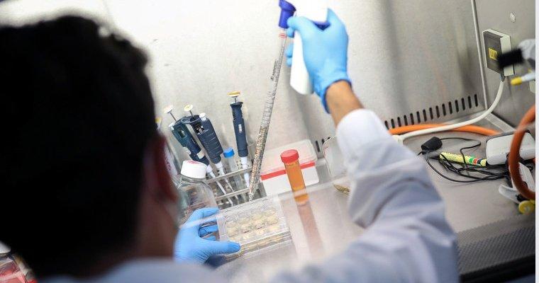 В Японии уничтожат миллионы доз вакцины Pfizer: причина не в качестве препарата