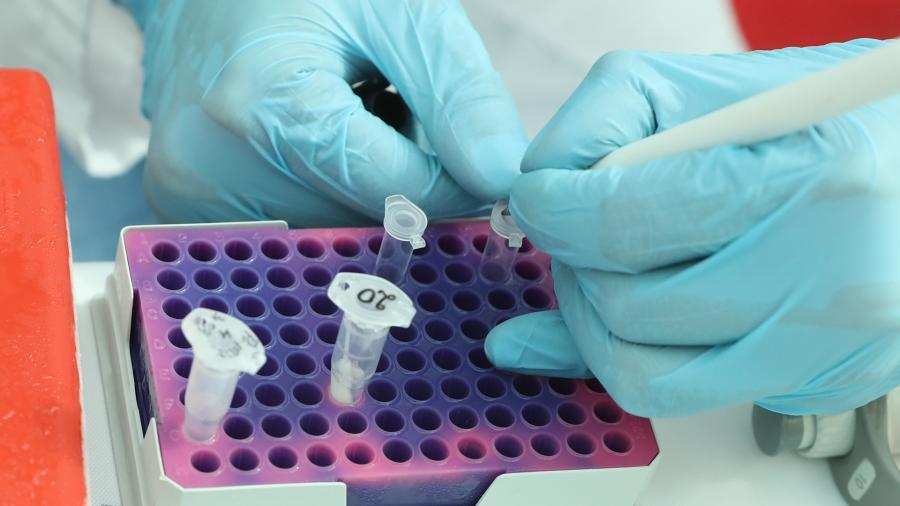 Врач рассказала, какая группа крови более устойчива к коронавирусу