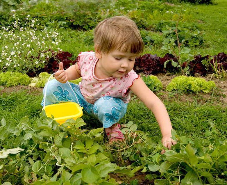 Посадите любимый цветок и купите маленькую лейку: как помочь детям полюбить возиться в саду