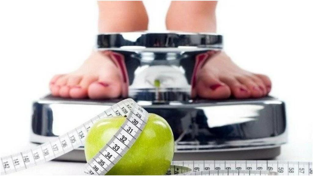 Хотим похудеть? Тогда надо считать не калории, а белки: немецкий ученый Бас Каст рекомендует