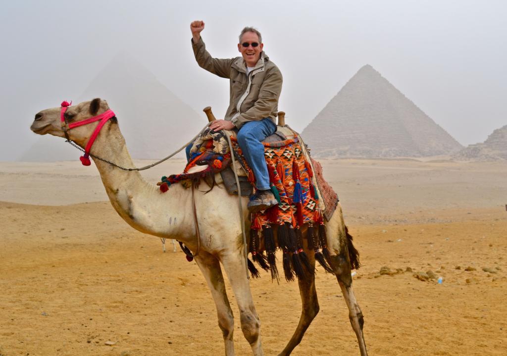 Ученые из Катара предложили лечить коронавирус с помощью верблюдов