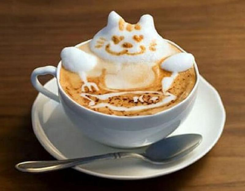 Любителям настоящего кофе: как добиться изысканного вкуса и аромата, лучшие советы и приемы приготовления напитка