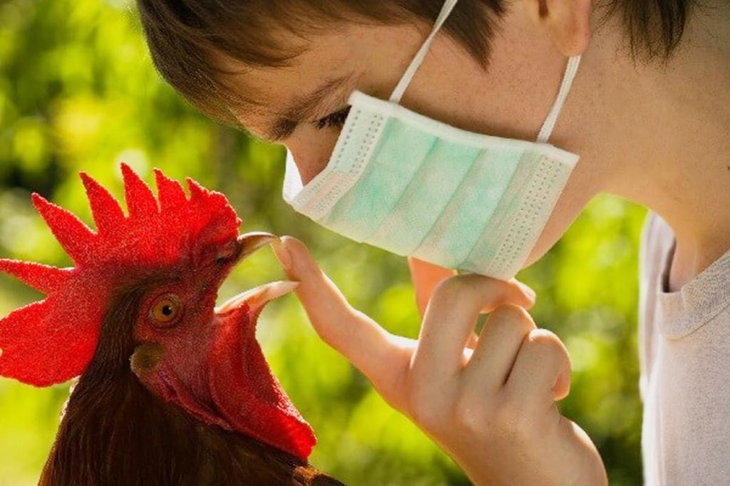 Любителям гоголя-моголя придется быть осторожными. Названы меры профилактики нового штамма птичьего гриппа