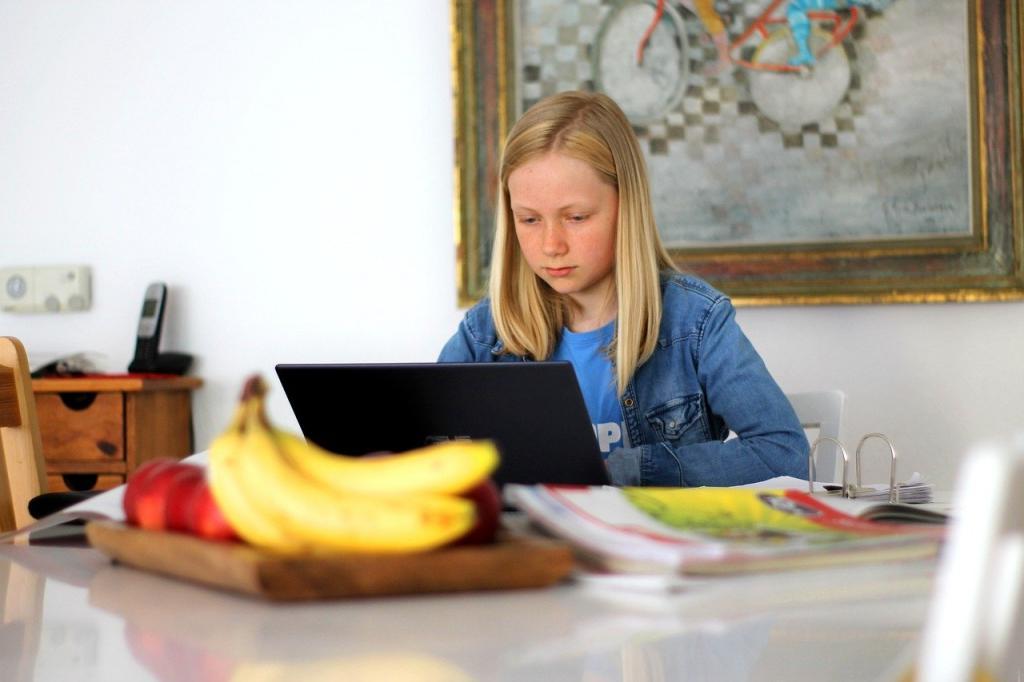 Восьмилетняя школьница из Калифорнии взломала платформу для обучения (ну и детки пошли!)