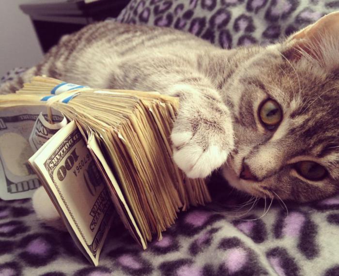 Кто чаще жертвует деньги, бедные или богатые