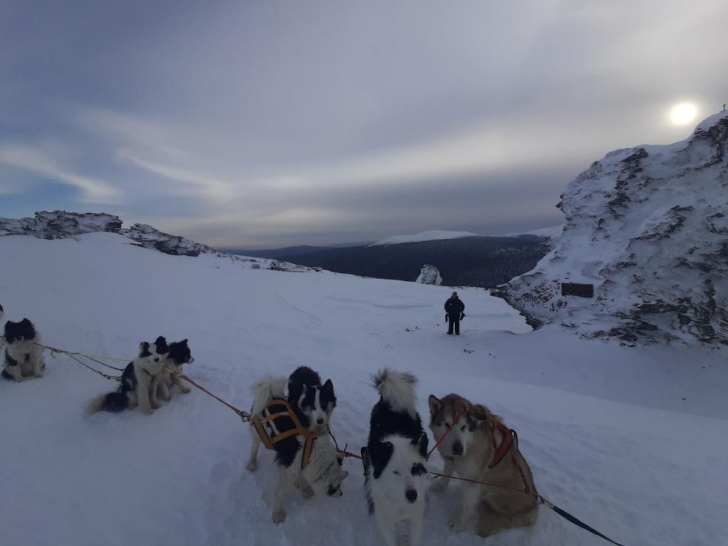 Печально известный перевал Дятлова на собачьих упряжках - так россиянин покорял новую вершину
