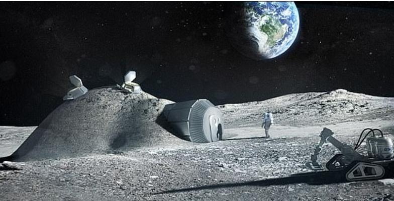 Астронавты смогут выращивать рыбу на Луне, используя икру, доставленную с Земли, и воду, находящуюся на поверхности Луны