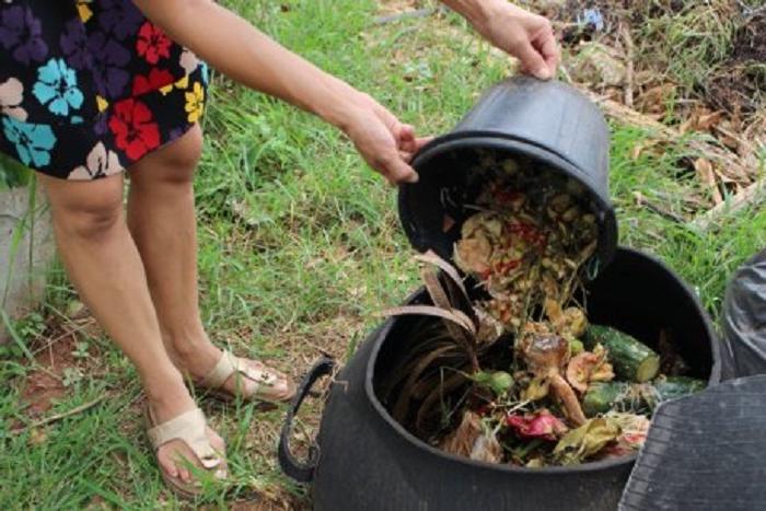 Оставшимся после зимы закаткам можно найти применение: для компостной ямы и не только