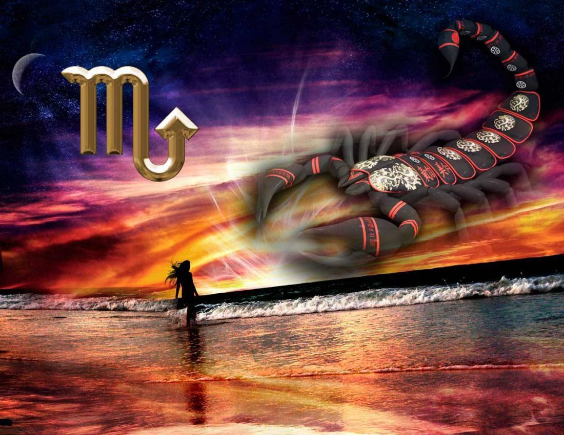 Скорпион картинки с надписью, прикольными мордами красивые