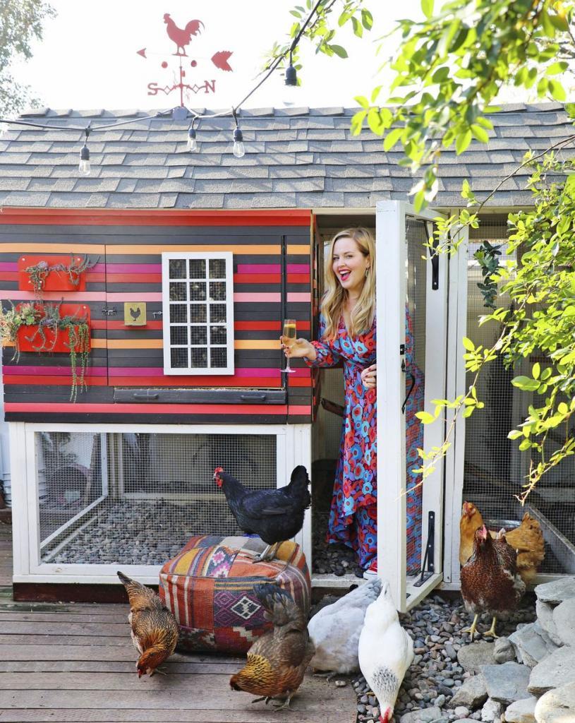 Роскошные домики для счастливых курочек: фото самых красивых курятников и птичников