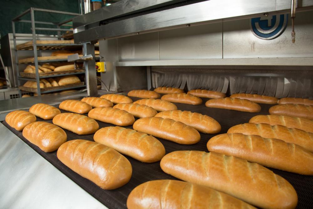 Мясо и хлеб из насекомых появятся в ближайшем будущем: почему такие продукты экономически выгодны и полезны для человека