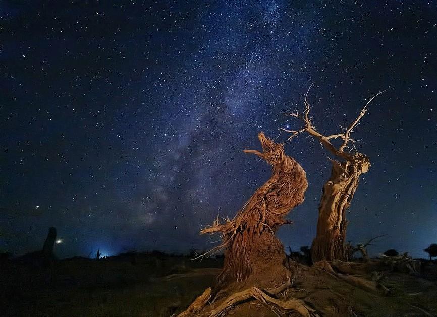 """Снимки-победители 10-го международного конкурса мобильной фотографии-2021: """"Рыбак, забрасывающий сеть"""" и другие"""