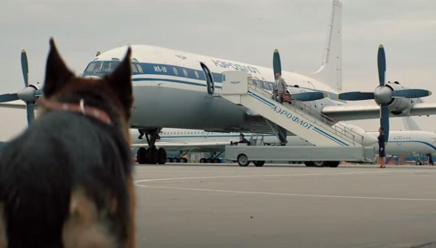 """""""Только из-за игры собаки уже стоит посмотреть"""": японцы с нетерпением ждут выхода японского варианта """"Пальмы"""" (видео)"""