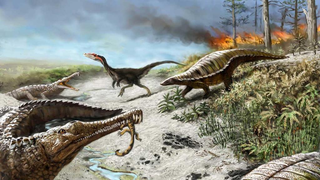 Крокодилы пережили удары астероидов, которые стали причиной гибели динозавров. Все дело в быстрой эволюции