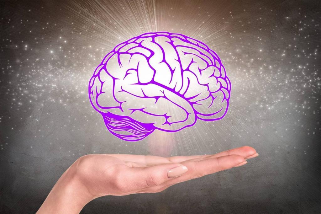 """""""Тут помню, тут не помню"""": ученые выяснили, что человеческий мозг хранит одинаковые воспоминания в обоих полушариях"""