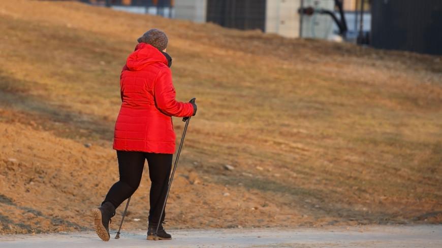 Медик рассказала, сколько шагов стоит проходить ежедневно, чтобы быстрее восстановиться после зимы и почувствовать себя бодрее